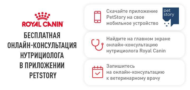 petstory-banner-psd.jpg (43 KB)