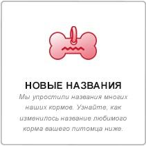 middle_2.jpg (12 KB)