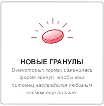 middle_3.jpg (13 KB)