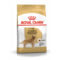 ROYAL CANIN корм для собак Golden Retriever (12 кг)