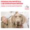 ROYAL CANIN Gastrointestinal Low Fat Small Dog