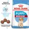 ROYAL CANIN корм для щенков Medium Puppy (14 кг)