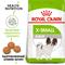 ROYAL CANIN корм для собак X-Small Adult (3 кг)