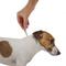 ADVOCATE капли на холку для собак до 4 кг, 3 шт.
