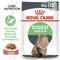 ROYAL CANIN Digest Sensitive, 85 гр